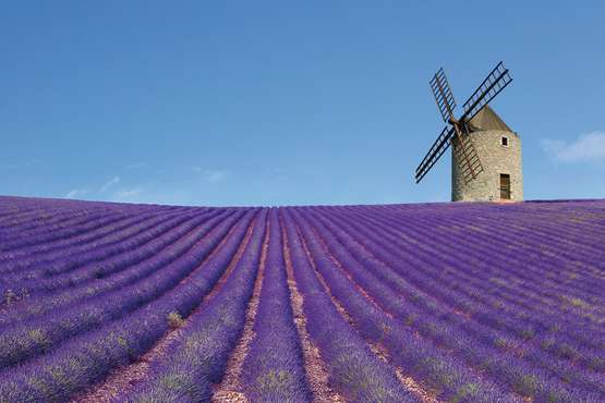 Provence © Philippe LERIDON - fotolia.com