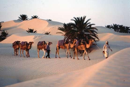 la Tunisie des nomades dans le désert
