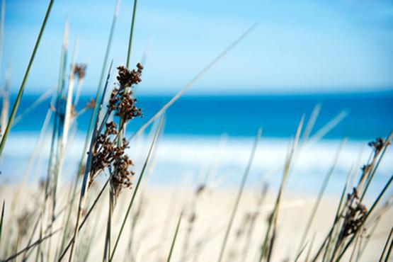 Weitere Ferien am Meer Angebote