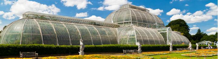 Kew Gardens: la renaissance de Temperate House