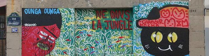 Paris 13<sup>e</sup>: berceau du street art