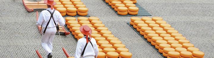 Käsemarkt in Alkmaar