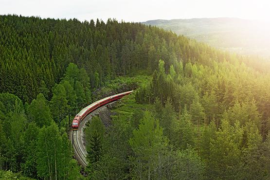 Norvège trains des fjords