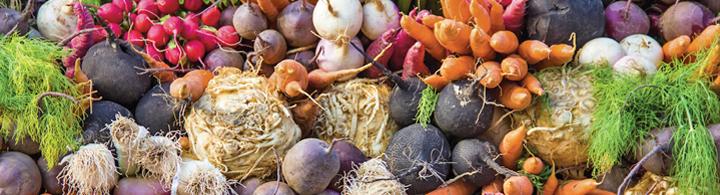 Terroir Markt