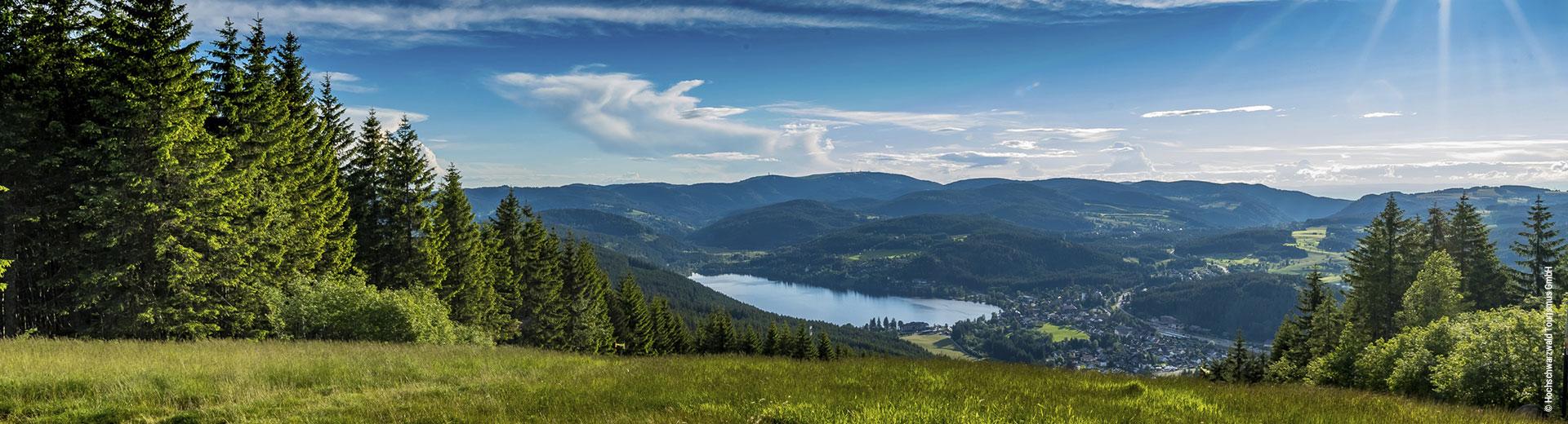 Wettbewerb Schwarzwald