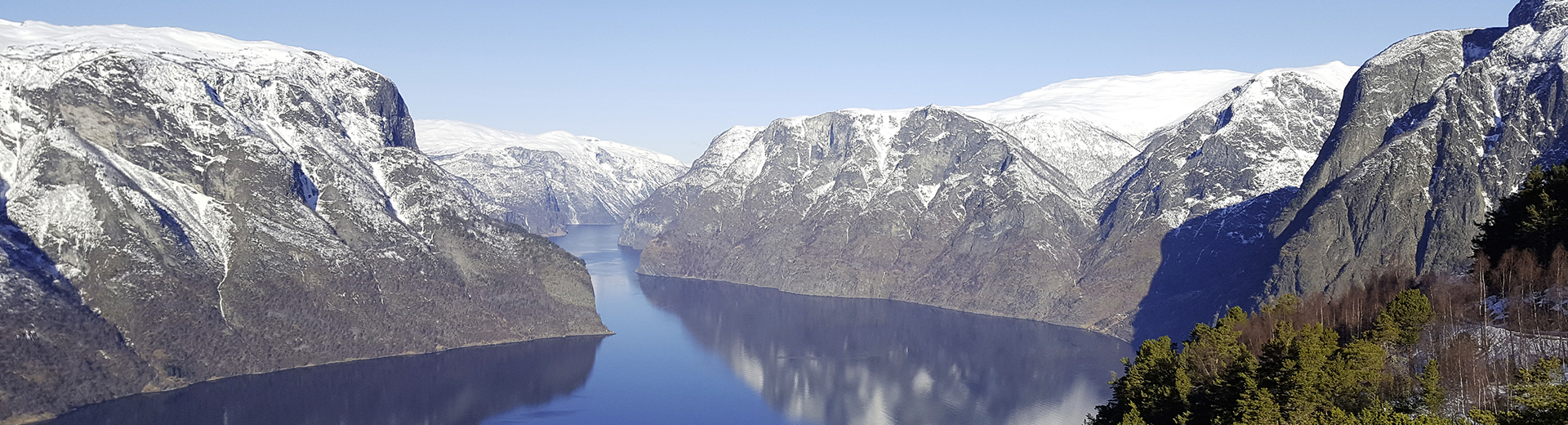 Trains des fjords en Norvège