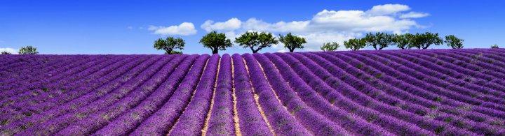 Escapade en Provence