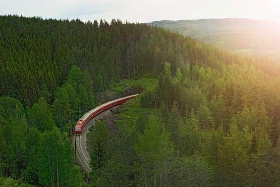 Norvege trains des fjords